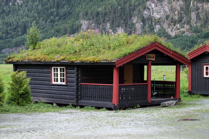 Природная крыша дома.Фото